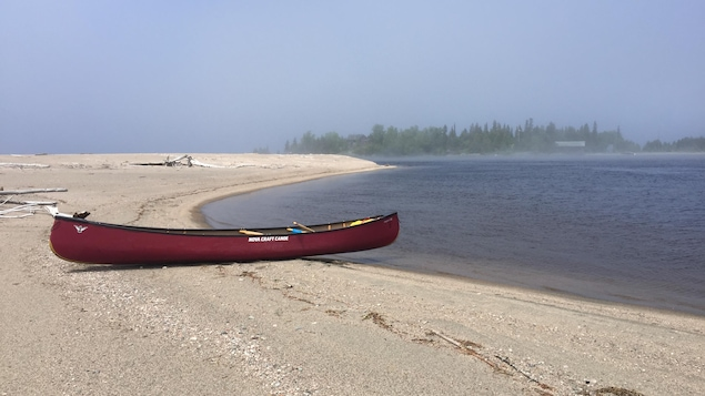 Un canot sur la plage Driftwood