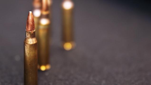 Cartouches de calibre .223