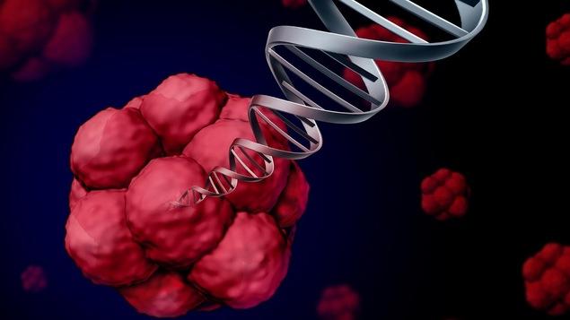 Dessin avec amas de cellules et ADN