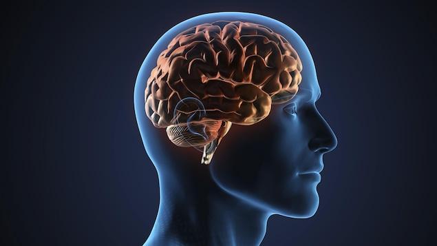 Un ancien receveur de la LCF entend donner son cerveau à la science