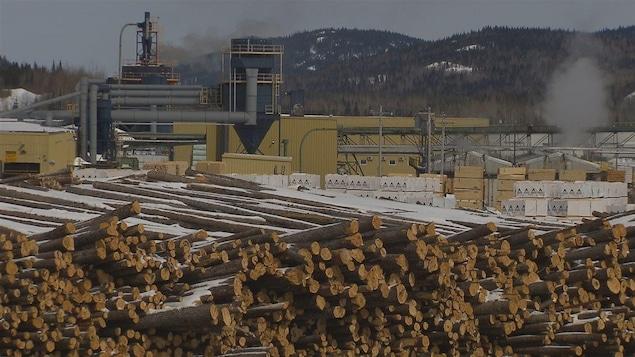 Billots de bois cordés devant l'usine de transformation de Chantiers Chibougamau