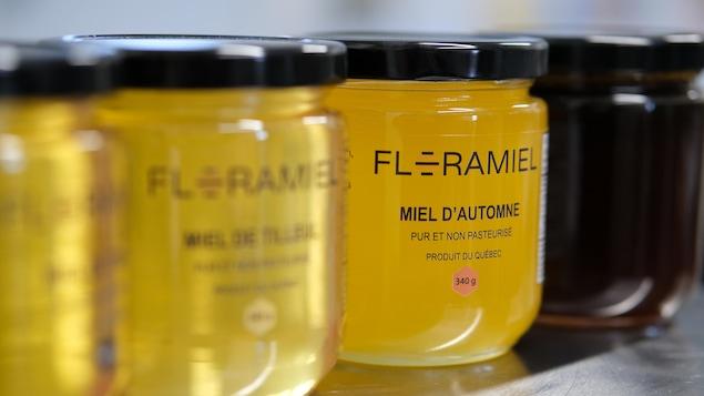 Un couple d'apiculteurs de Val-Alain met en valeur les parfums nobles du patrimoine végétal québécois dans chacun de leur miel.