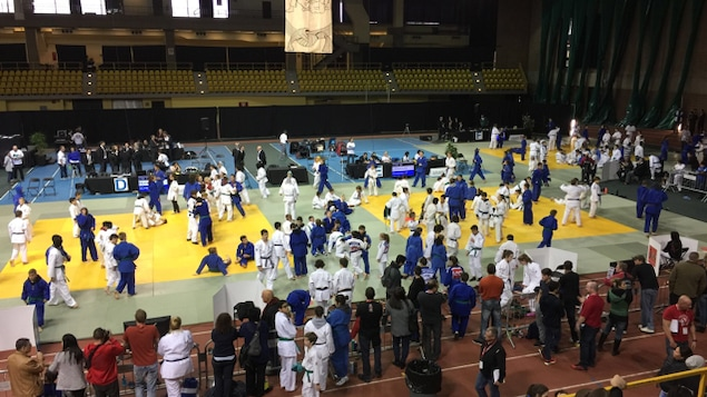 Des dizaines de judokas s'entraînent dans un gymnase