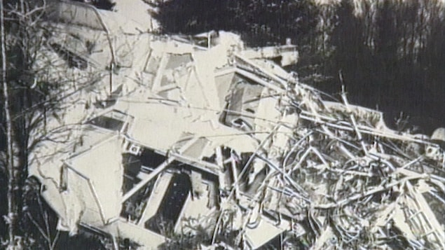 Une photo en noir et blanc des décombres d'un avion écrasé au fond d'une forêt