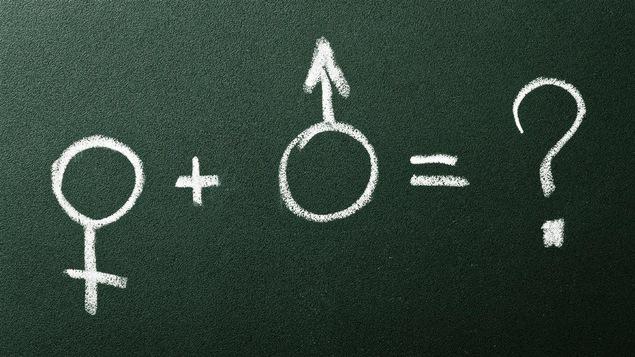 Un tableau vert sur lequel sont dessinés à la craie des symboles de genre masculin et féminin.