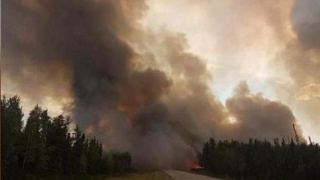 Un feu de forêt.
