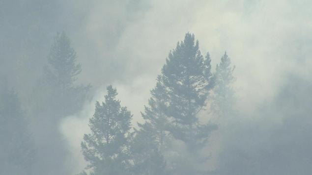 La SOPFEU envoie 40 pompiers en Colombie-Britannique