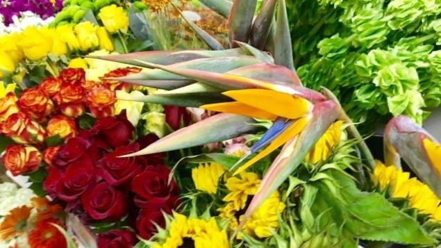 Un bouquet de fleurs contenant des roses et des oiseaux du paradis