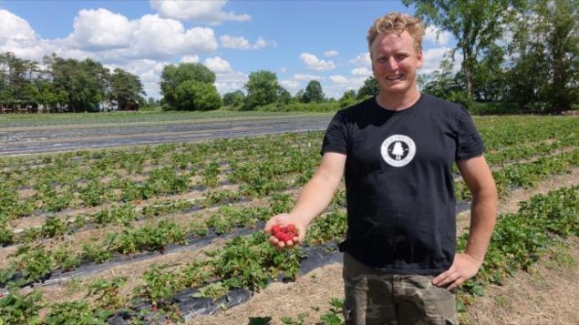 Paul Vandenberg des Fermes Rideau Pines avec des fraises dans sa main droite.