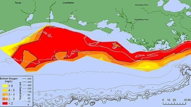 Cette carte représente la zone morte du golfe du Mexique en juillet 2017.