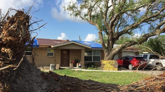 Une souche d'arbre arraché devant une maison endommagée par l'ouragan