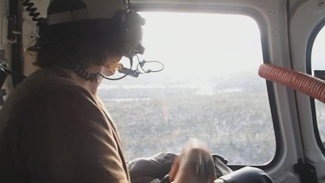 Inventaire des orignaux et des cerfs de Virginie réalisé par avion
