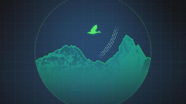 image infographique d'un oiseau migrateur dans un radar