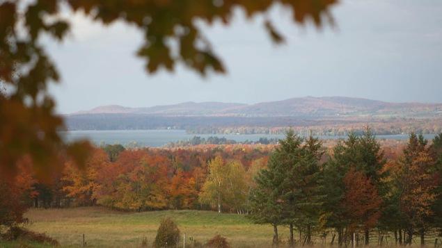 Paysage d'automne, vue d'un plan d'eau bordé de forêt et d'un champ agricole.