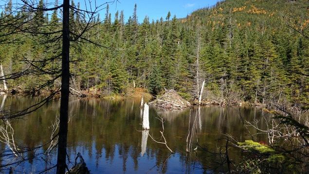 Lac de la réserve faunique de Matane