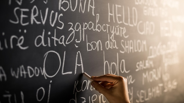Le mot « bonjour » écrit en plusieurs langues sur un tableau d'école.