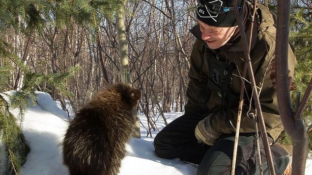Un homme est agenouillé dans la neige et apprivoise un porc-épic sympathique.