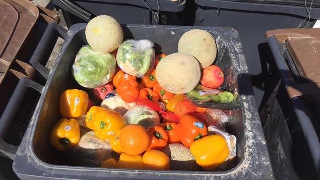 Des poivrons, melons, pommes de laitue, choux-fleurs et plusieurs autres denrées alimentaires ont été jetés dans une poubelle.