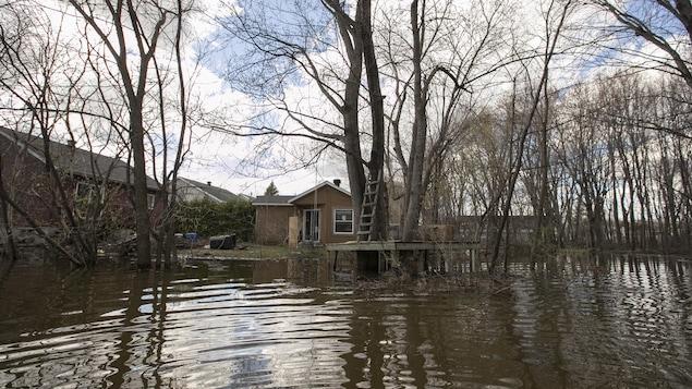 Des terrains inondés derrière des maisons.