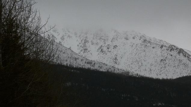 Des avalanches se déclenchent régulièrement sur le Mont-Albert