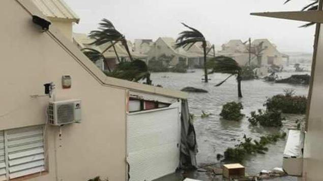 Un quartier de l'île de Saint-Martin est envahi par les eaux et les débris, tandis que le vent souffle durement sur les palmiers.