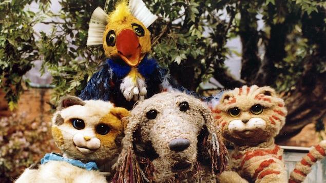 Les personnages de l'émission jeunesse Pacha et les chats