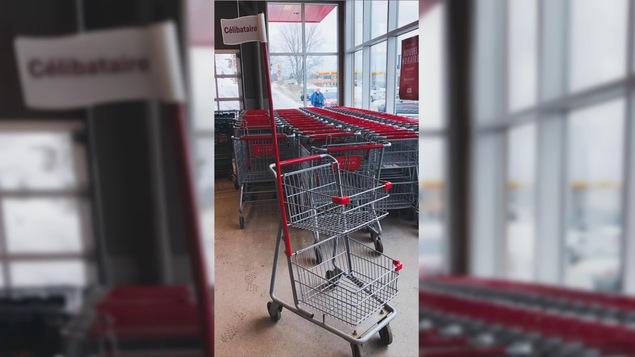 Un panier d'épicerie porte un drapeau indiquant «Célibataire».
