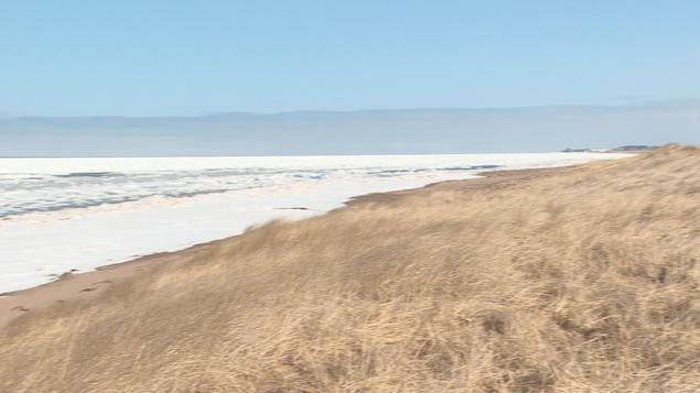 La plage en hiver dans la région de l'Aboiteau.
