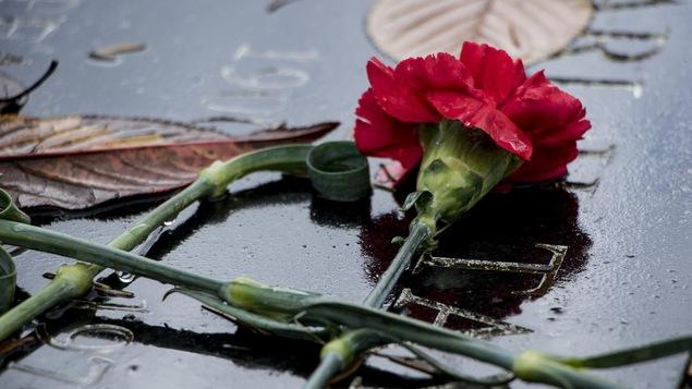 Une fleur déposée sur une pierre tombale.