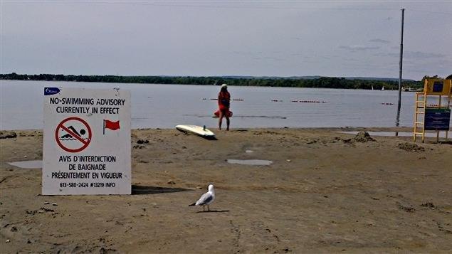 Un panneau indique que la plage Britannia est interdite à la baignade