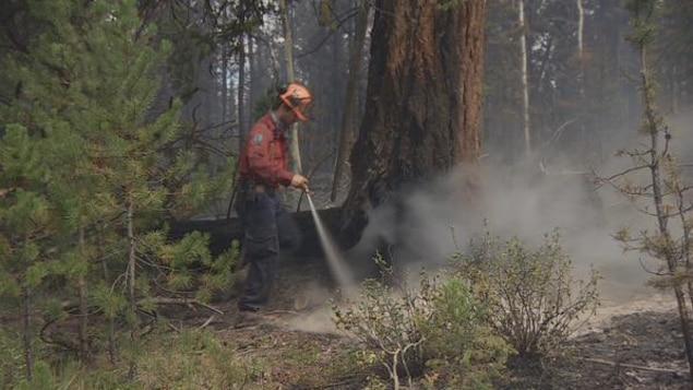 Un pompier à l'oeuvre dans une forêt de la Colombie-Britannique
