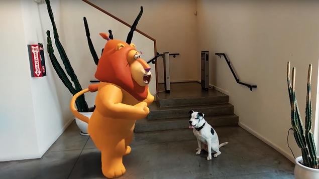 Une photo montrant un chien au pied d'un escalier avec, devant lui, un grand lion anthropomorphe rajouté par ordinateur.