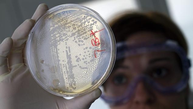 Photo d'une chercheuse en laboratoire