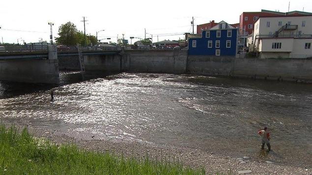 La rivière Matane, une expérience de pêche au saumon en plein centre-ville