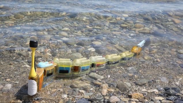 L'objectif du robot nageur est de remonter à la source d'une pollution.