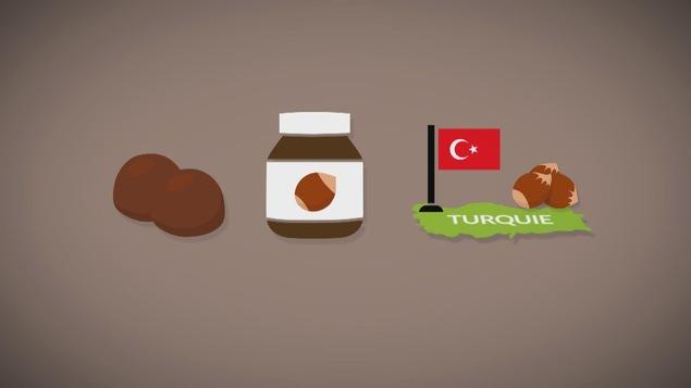 Les noisettes sont prisées pour la tartinade aux noisettes et chocolat.