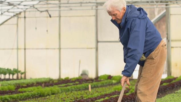 Eliot Coleman qui travaille le sol dans une serre.