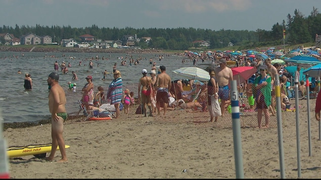 Une foule de baigneurs sur la plage en été