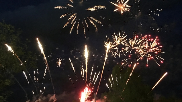 Des feux d'artifices éclatent dans le ciel.