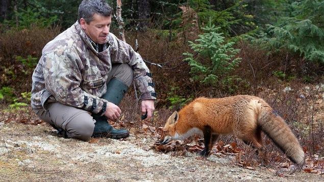 Un homme accroupi près d'un renard dans la forêt.