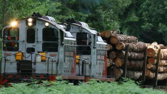 Un train de l'entreprise Western Forest Products