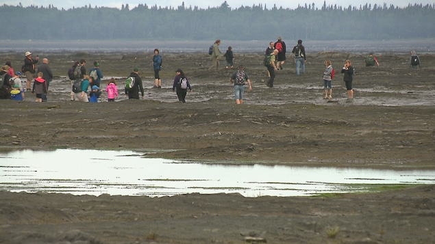 132 personnes ont traversé à marée basse samedi matin