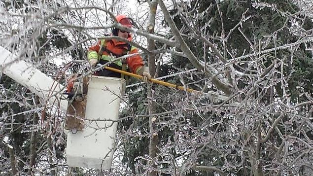 Un monteur de ligne coupe des branches tombées sur un fil électrique