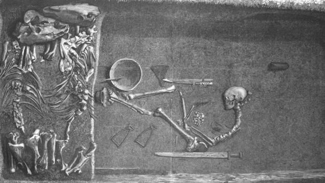 Les restes furent découverts dans les années 1880 en Suède.