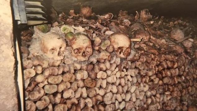 Des amoncellements d'ossements dans les catacombes de Paris
