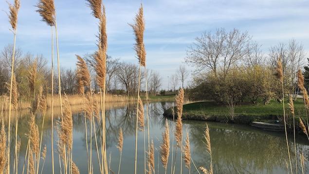 Le parc kiwanis Riverside à Windsor.