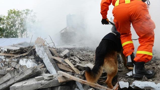 Un travailleur vêtu d'une combinaison orange déambulent dans les décombres d'un bâtiment après une catastrophe.