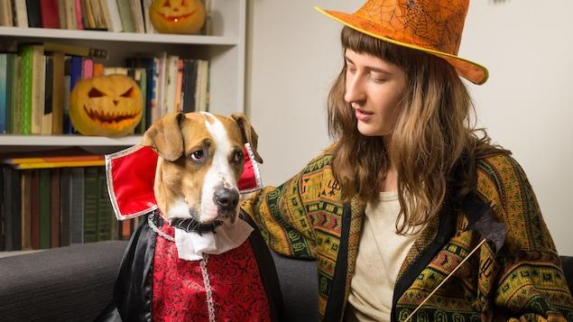 Un chien déguisé par son maître pour l'Halloween.