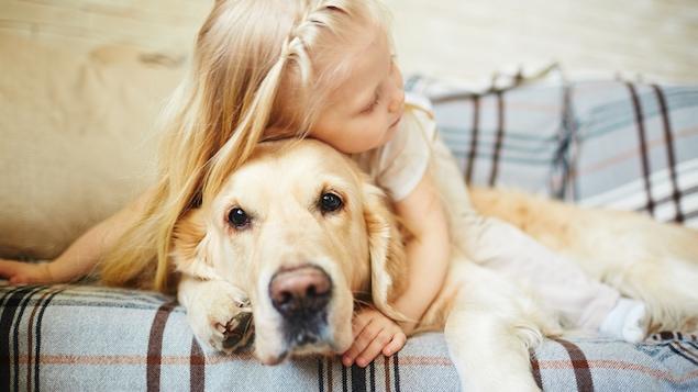 Les chiens, moins propres que les chats, portent plus de microorganismes en eux.