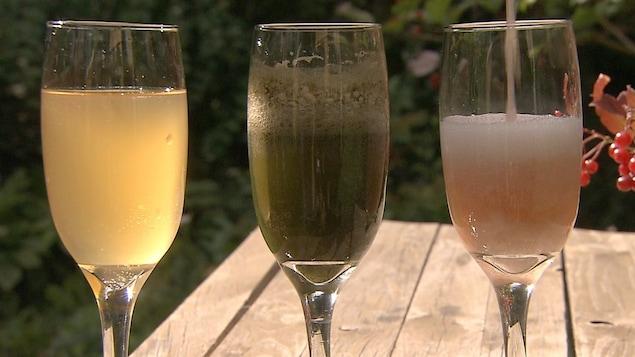Trois verres de kombucha